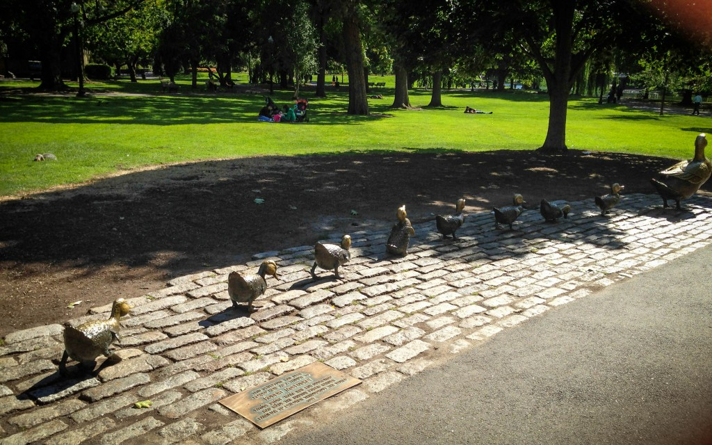Boston- make way for ducklings