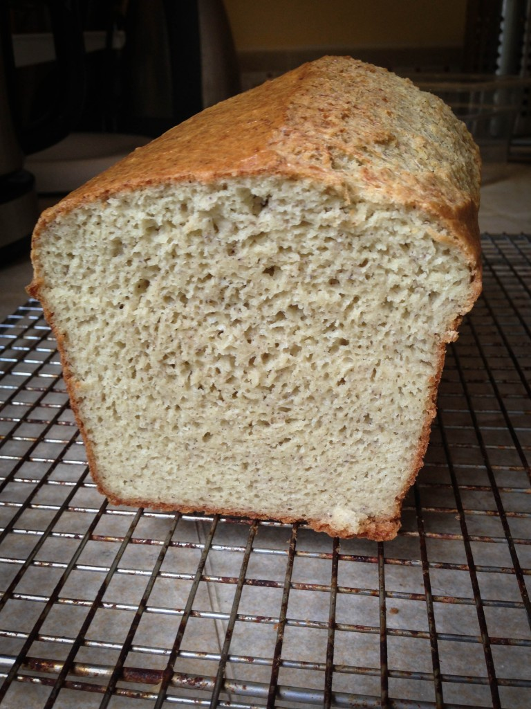cookbook- sandwich bread
